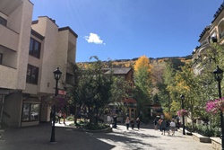 dog friendly by owner vacation rental in vail colorado